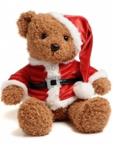 teddy santa